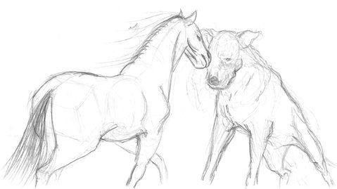 horse-dog-1_72
